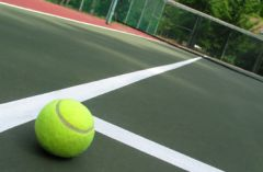 tennis_ball_366x240_resized-1.jpg